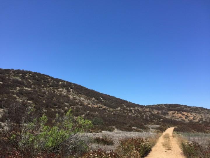 No Roadmap - digital nomad