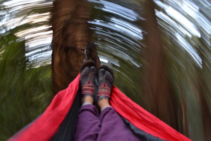 butano-state-park-campsite